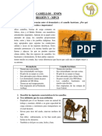 Especialidad de Camellos