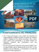 Actuales Problemáticas en El Cultivo de Palma Africana