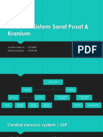 Anatomi SSP & Kranium