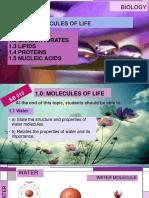 1.Molecules of Life.pdf