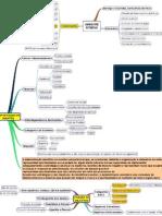 Mapas Mentais Auditoria