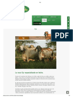 Gyr.pdf