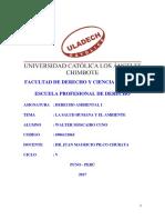 SALUD HUMANA Y EL AMBIENTE.pdf