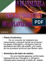 Planta Exotermica