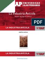 1.-Prod. de Aves - La Industria Avícola