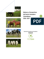 Balance_Perspectivas_2016_2017.pdf
