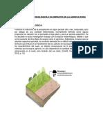 La Sequía Metereológica y Su Impacto en La Agricultura