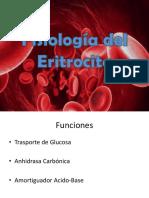 Fisiologia Del Eritrocito