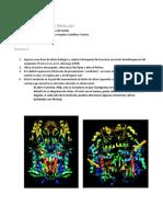 Práctica 1 Bioinformatica Corregida