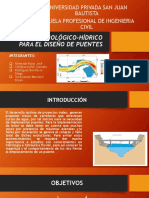 Estudio Hidrológico-hídrico Para El Diseño de Puentes