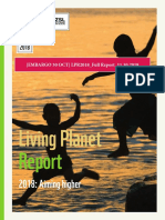 [Embargo 30 Oct] Lpr2018_full Report_12.10.2018