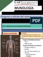 2 semana de inmunologia.pdf
