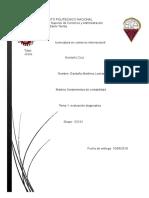 Garduño Martinez Leonardo Estructura Basica de Las Nif a-1
