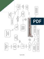 Immune System Mind Maps 2