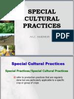 Special Cultural Practices