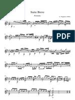 Suite Breve - Chitarra