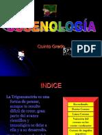 Cosenología