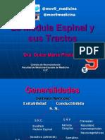 (1) La Medula y Sus Tractos (Examen)