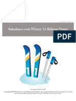 Salesforce.com Winter11 Release Notes