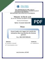 Essai d'Analyse de l'Apport de l'Activité Des Entreprises Dans La Production Des Boissons Gazeuses