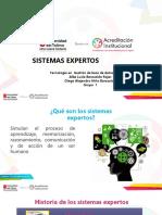 Sistemas Expertos (Exposicion) Diana Marcela