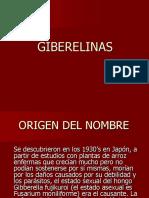 Giberelinas y Citocininas