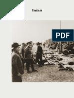 Pogroms - The Holocaust Encyclopedia
