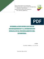 Trabajo Interrelacion de Ciclos Biogeoquimicos