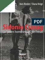 Sidonie Csillag, La Joven Homosexual de Freud