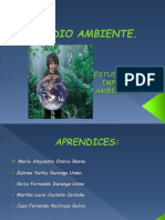 Diapositivas Estudio de Impacto Ambiental