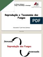 3.Reprodução e Taxonomia Dos Fungos