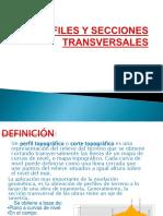 312439230-Perfiles-y-Secciones-Transversales.pptx