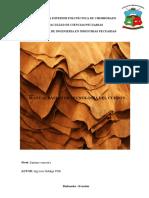 Manual Basico Tecnologia Del Cuero