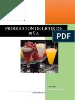 AVANCE-PROYECTO-DE-INVERSION-II-LICORES-de-fruts-1.docx