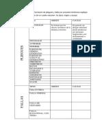 Word Paper n2 de Geologia Estructural