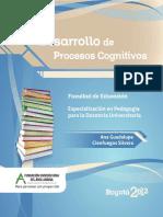 Desarrollo de Procesos Cognitivos PDF