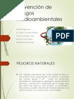 Prevencion de Riesgos Medioambientales2