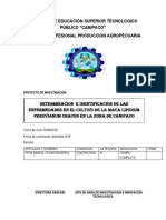 Instituto de Educacion Superior Tecnologico Publico
