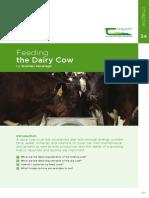 Feeding Diary Cow
