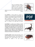 Animales Que Perjudican La Salud