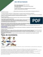 Características Generales Del Movimiento