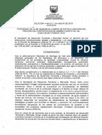 RESOLUCION COMITE ESTRUCTURADOR
