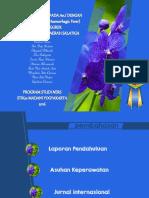 PPT_DHF_Dengue_Hemorrhagic_fever_demam_b.pdf