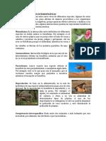 015-1M-BIOLOGÍA-INTERACCIONESINTERESPECÍFICAS