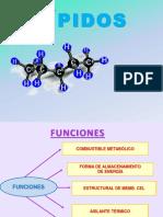 3ra Clase Estructura de Lipidos