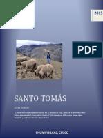 INFORME DE SANTO TOMAS1.pdf