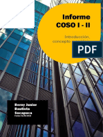 INFORME COSO I y II