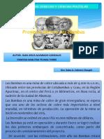 DIAPOSITIVAS_BAMBAS.pptx