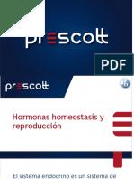 6.6 Hormonas Homeostasis y Reproducción