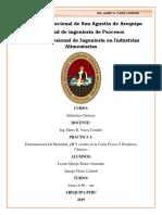 PRACTIC 4 LECHES TERMINADO.docx